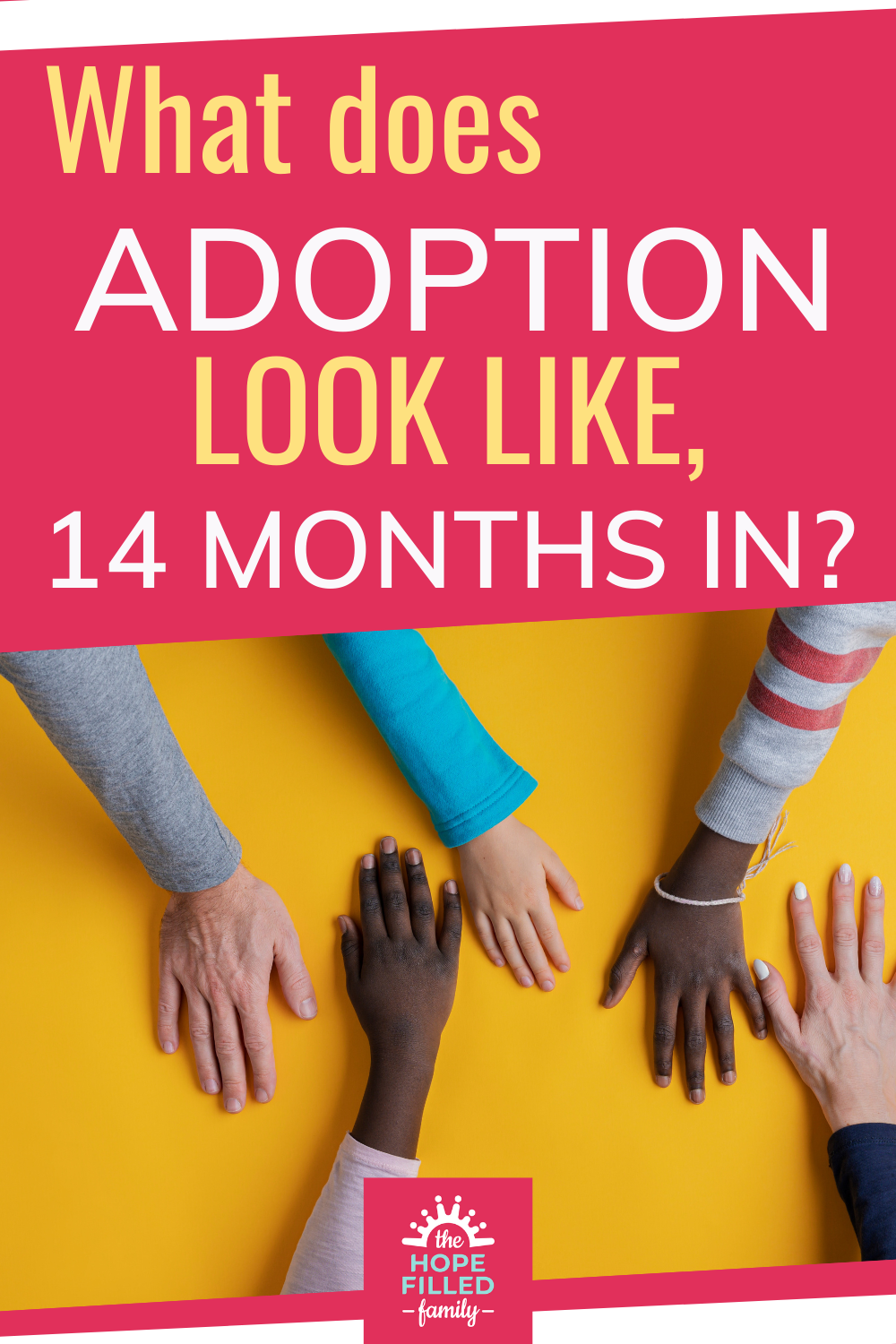 What does the adoption journey look like after 14 months?