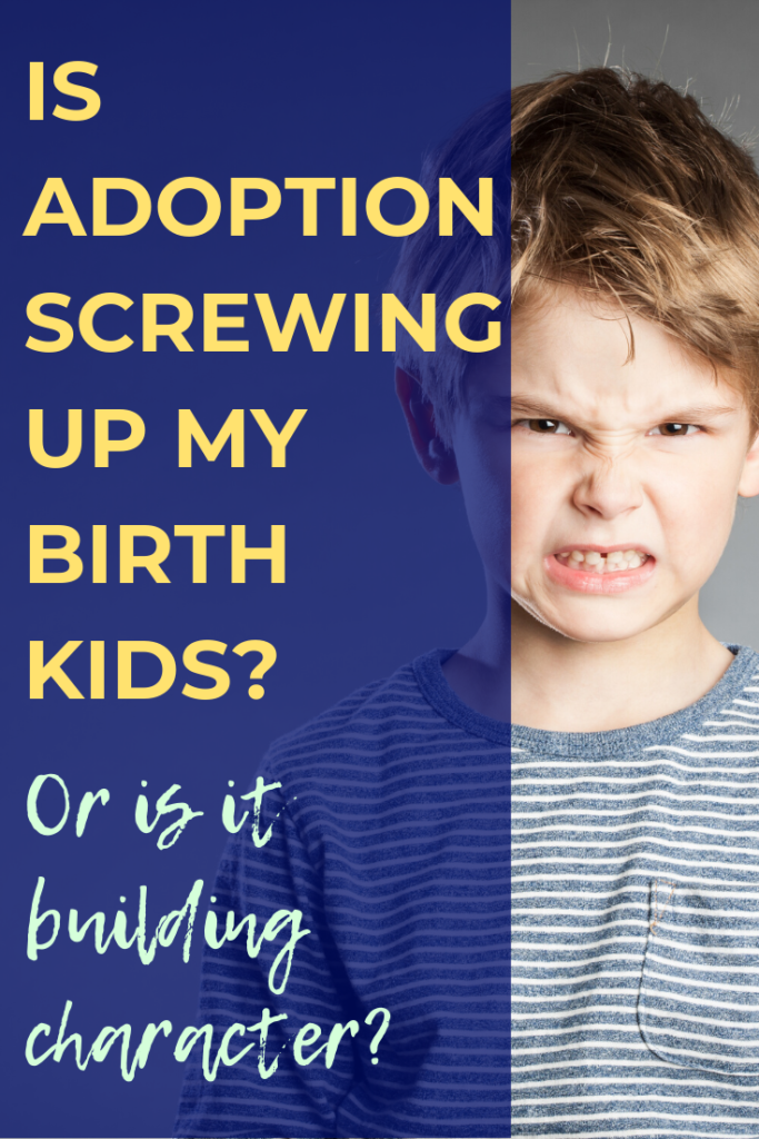 Mixing biological and adopted kids comes with challenges. What are the prospects for blended families? Is adoption after a biological child/children a good idea? One mama shares her experience.