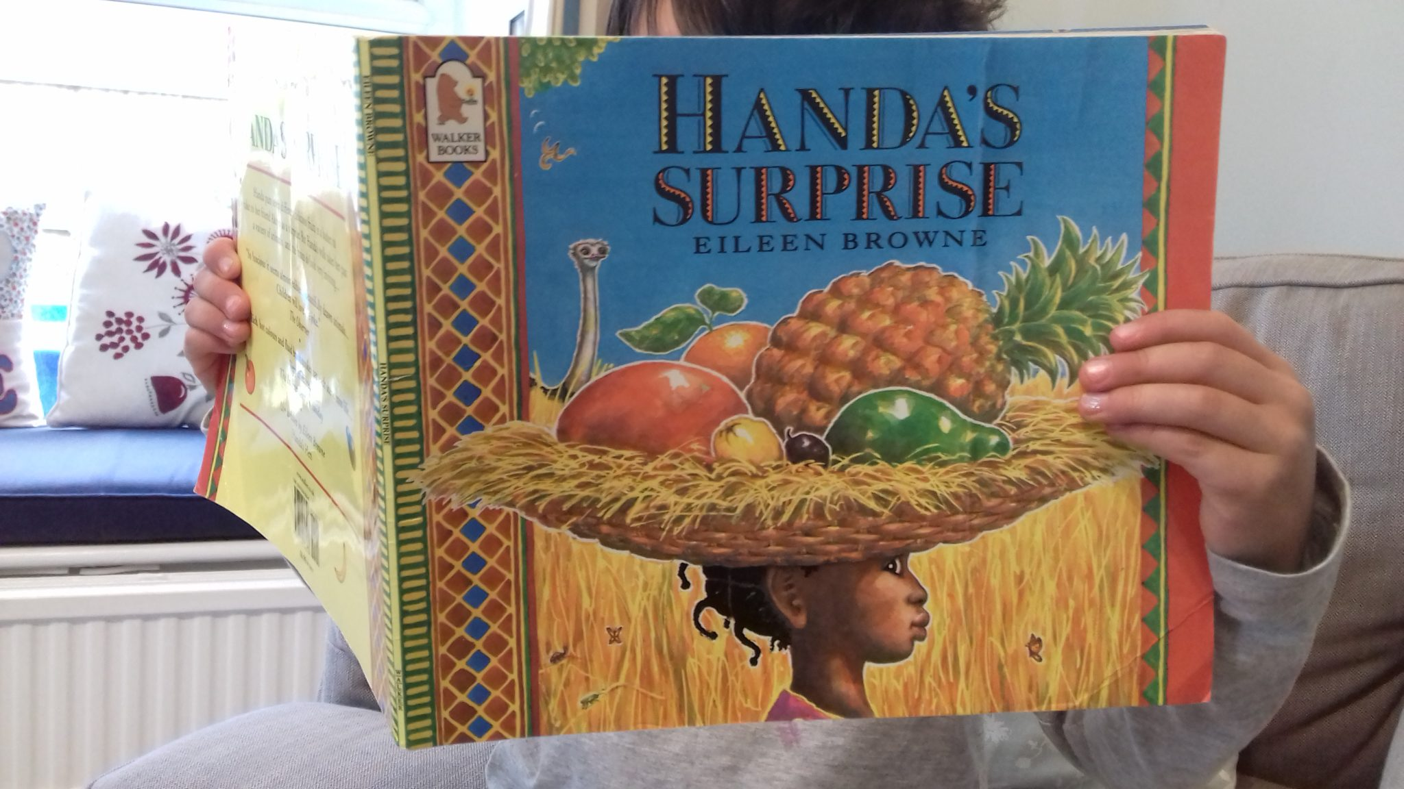Handa's Surprise - Looking for multicultural books for your children? This list features 25+ of the best diversity books about race and culture for the kids in your family or your classroom.